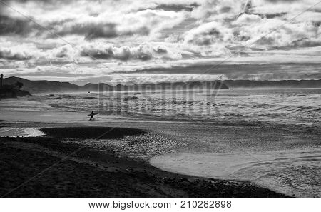 Lone Surfer Enters Vast Seascape in Black and White with Cloudy Sky in Contrast