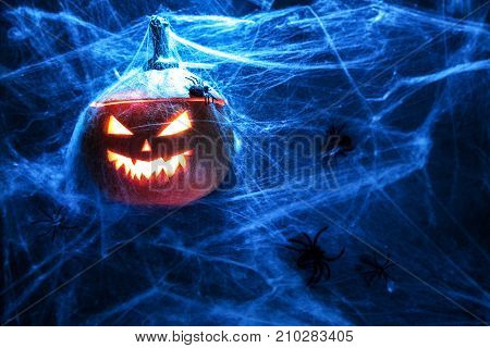 Halloween pumpkin grinning face background Spiderweb spider top view mystery and ghastlycopy space
