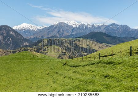 green grass growing on slopes in New Zealand with Kaikoura mountains in background