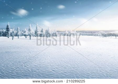 Landscape Of Snowy Field With Frozen Trees