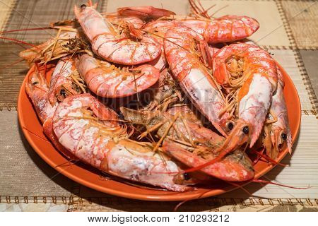 Close up boiled langoustines on plate healthy seafood concept