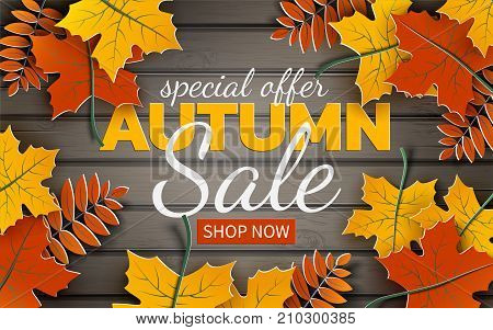 Autumn sale banner paper colorful tree leaf (maple rowan leaves) on wood texture background. Autumnal design for fall season banner poster web site paper cut out art style vector illustration
