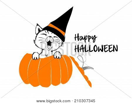 Cute black cat in the orange pumpkin for happy Halloween - vector illustration isolated on white background
