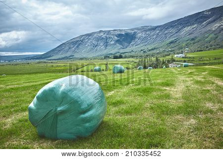 hay bales in a field. Travel to Iceland. Hay bales in green plastic film stacked on a huge field.