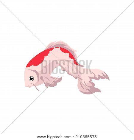 Japanese, Asian koi carp, goldfish, gold fish, cartoon vector illustration isolated on white background. Isolated cartoon picture of Japanese koi carp, golden fish