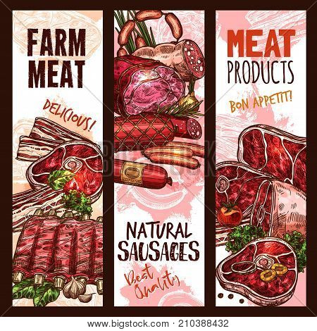 Meat farm products and natural sausages or delicatessen of pork ham, bacon or beef steak brisket, mutton ribs and tenderloin, salami and pepperoni or cervelat. Butcher shop or market vector sketch