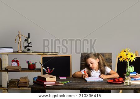 Girl Sits At Desk With Books, Flowers, Fruit And Blackboard