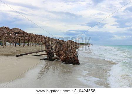 Fallen sunshades on the beach, Cuba, Varadero