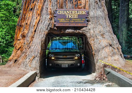 REDWOOD NP, CALIFORNIA, USA - MAY 21, 2013: Famous attraction of the Redwood National Park - a drive through tree.