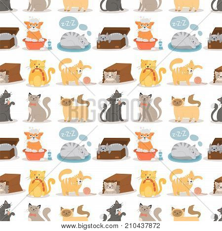 Cat vector illustration cute animal funny decorative characters color abstract feline domestic trendy pet drawn. Happy mammal fur adorable breed seamless pattern.