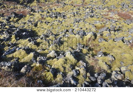 Icelandic landscape of the Snaefellsnes Peninsula with rocks and moss poster