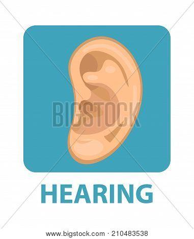 Sensitive hearing icon flat style. Ear. Isolated on white background. Vector illustration
