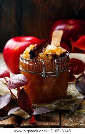 brown sugar and cinnamon applesauce.style rustic.selective focus