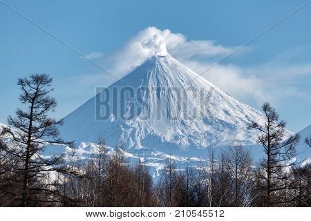 Winter volcanic landscape of Kamchatka Peninsula: view of eruption active Klyuchevskoy Volcano in sunny day clear weather. Eurasia Russian Far East Kamchatka Region Klyuchevskaya Group of Volcanoes poster