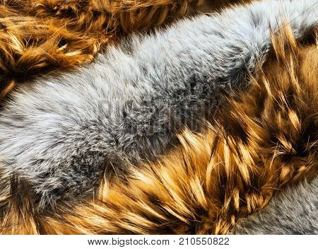 Brown and gray animal long-haired fur texture background. Raccoon and rabbit types of pelts arranged in a row close-up
