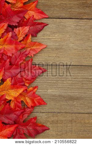Autumn background with fall leaves on weathered wood with copy space for your message