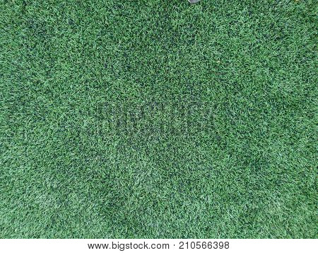 Close up on soccer field with artificial grass and white stripes
