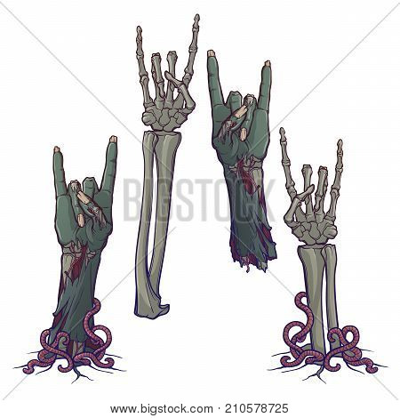 Zombie body language. Sign of the horns. Set of lifelike depicted rotting zombie hands and skeleton hands rising from under the ground and torn apart. Painted linear drawing isolated on white