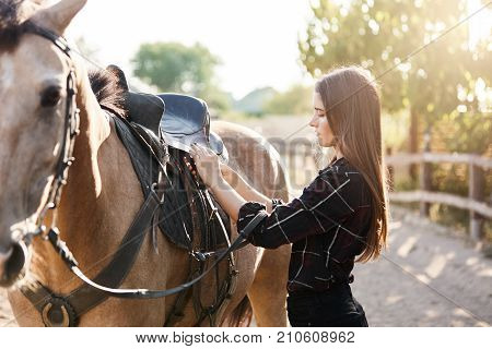 Young female equine owner tying down the saddle preparing to take a ride down to the river from the animal farm on a sunny autumn day.