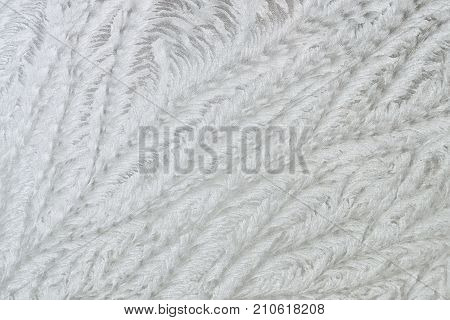 Hoar frost patterns on the glass. Winter background.