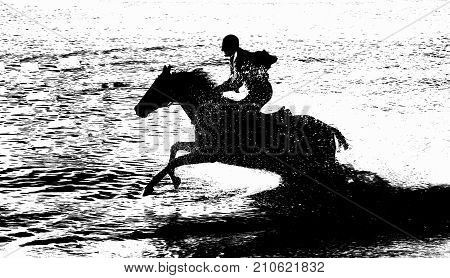 Black horse racing on the sea in splashes of water