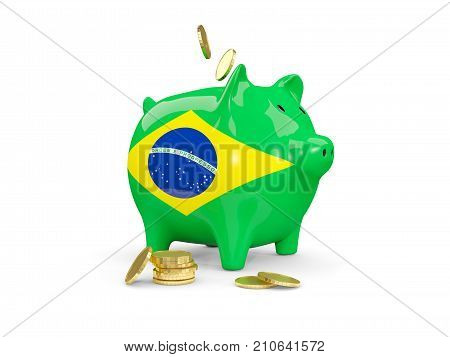 Fat Piggy Bank With Fag Of Brazil