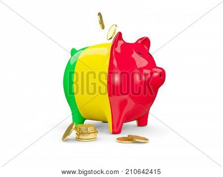 Fat Piggy Bank With Fag Of Mali