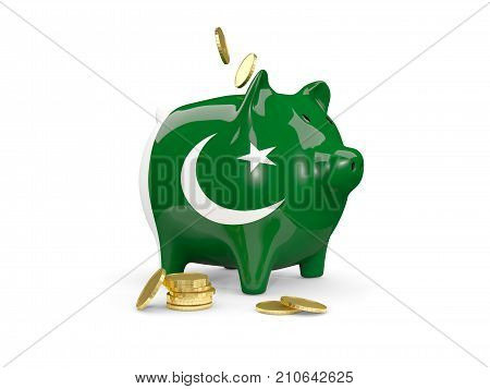 Fat Piggy Bank With Fag Of Pakistan