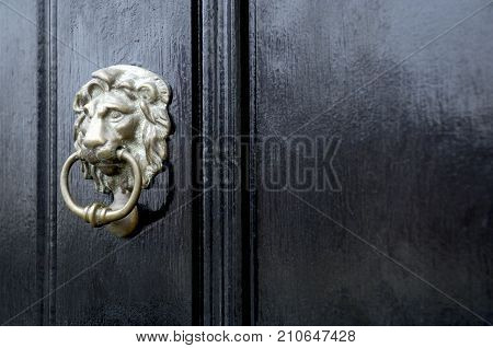 Brass Lion Door Knocker Installed On Wooden Black Door