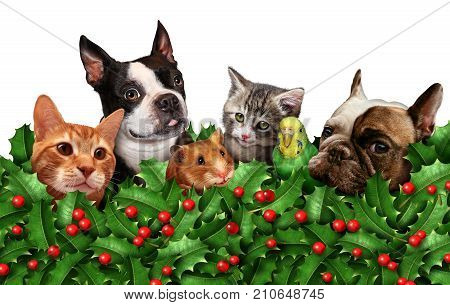 Cute seasonal holiday pet group horizontal background with red berries and holly leaves as a winter christmas classic decoration and new year celebration adorable animals ornament isolated with 3D illustration elements.