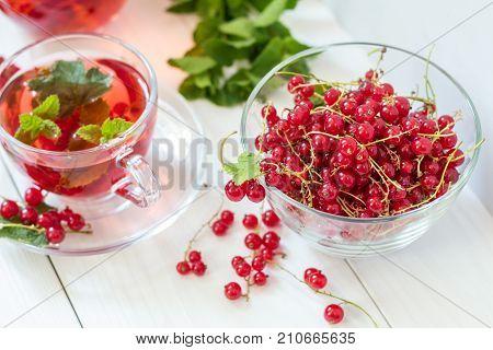 Fresh Redcurrant In Transparent Glass Vase