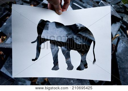 crafting cut out work. craftwork subject animal