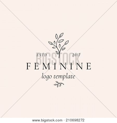 Abstract Feminine Vector Sign, Symbol or Logo Template. Retro Floral Illustration with Classy Typography. Premium Quality Emblem for Beauty Salon, SPA, Wedding Boutiques, etc. Isolated.