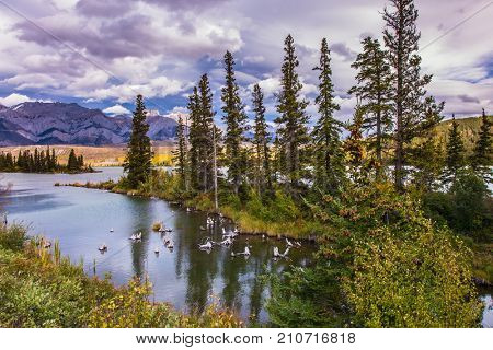 The valley along the Pocahontas road. Shallow-water lakes, picturesque firs and distant mountains. Lush clouds are reflected in the smooth water. Concept of active and ecological tourism