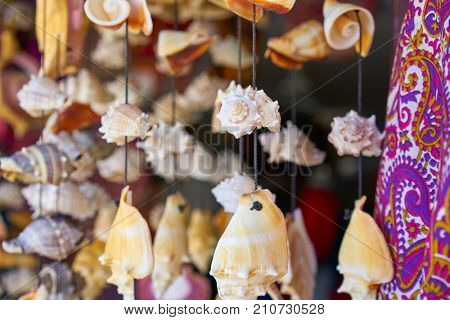 seashell mobile wind chime hanging handcraft souvenir from mexico