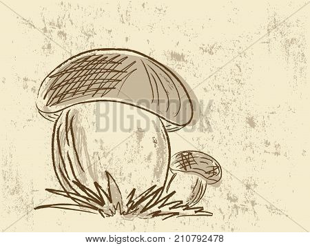 Abstract hand drawn illustration with two mushrooms