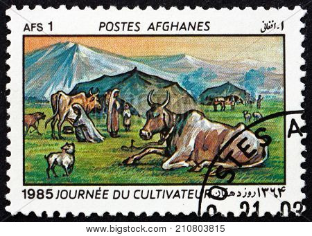 AFGHANISTAN - CIRCA 1985: a stamp printed in Afghanistan shows cattle and dog, farmers day, circa 1985
