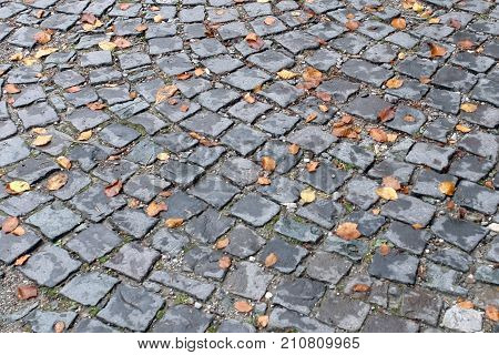 Yellow autumn leaves on the surface old paving roadway.