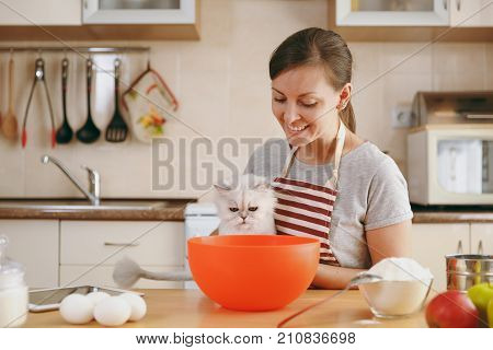A Young Beautiful Happy Woman With A White Persian Cat Prepares Dough For Christmas Cakes With Table