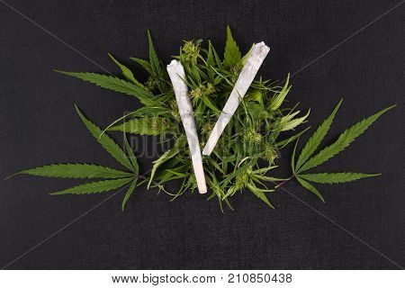Pile of medical cannabis leaves and two marijuana joints on dark background directly from above. Alternative therapy medical marijuana.