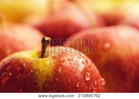 apple fruit. fresh raw lot of red apples many organic fresh sweet fruit wet apple background with water drops