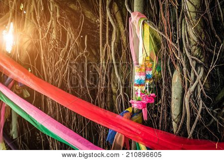Five colors fabric wrap around the tree and garland on respiratory root of banyan tree with flare light. The belief of Thai people. Ways to Protect the Environment. Protect trees from being cut.