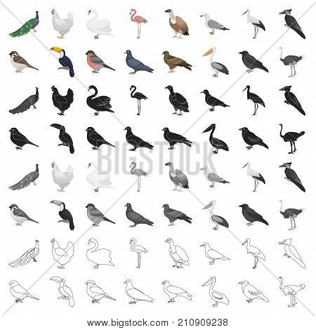 Bird set icons in cartoon style. Big collection bird vector symbol stock