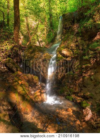 Waterfall and thicket in the park Berendeyevo Tsarstvo in sunny summer day Sochi Russia