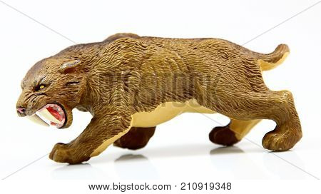 toy saber toothed tiger on white background