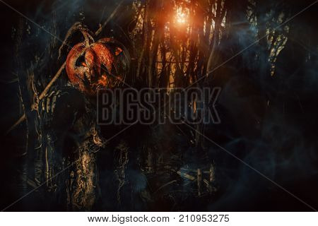 Halloween character. A terrible Jack-lantern with a pumpkin on his head wanders through the night forest.