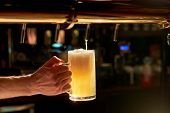 Dispensing draught beer in glass. Barman hand at beer tap pouring fresh cold beer. Beer pouring from a tap in restaurant. poster