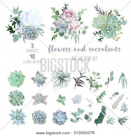 Echeveria, Tillandsia Blue, Grey, Mint Succulents, White Hydrangea, Pale Pink Rose, Greenery And Euc