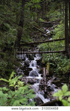 Small Waterfall In The Valley Of Koscielisko, Tatra Mountains, Poland