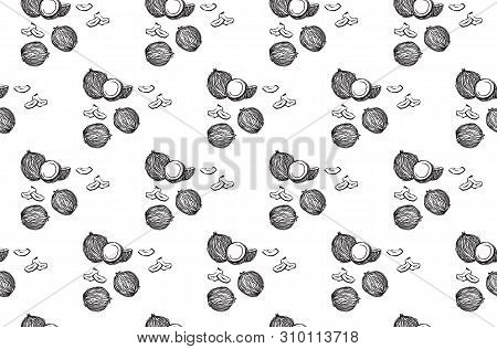 Hand Drawn Coconuts Outline Seamless Pattern. Vector Black Sketch Ink Drawing Coco Fruits. Graphic I